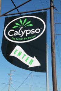 Calypso Cafe - Enter Here